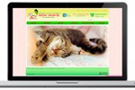 Лапы Хвост интернет магазин кормов для животных