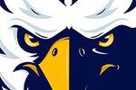 Fighting Eagle Foundation