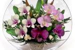 Цветы в вакууме как отличный вариант подарка