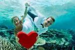 «Птица Счастья» - ваша неповторимая свадьба!
