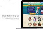 Landing Page (EKZODERM избавление от 7 видов экзем)