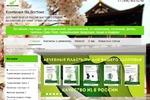 Интернет магазин_Настройка Яндекс Директ и Google AdWords