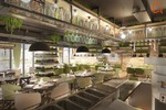 Дизайн и визуализация  Ресторана  Pioppo  ALBERO