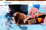 Лендинг Hydro Canine