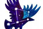 Созвездие ворона