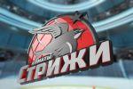 Хоккейный Клуб Стрижи