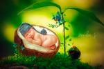 Спящая малявочка (сказочный коллаж)