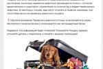 Пост ВК для Авиба.ру