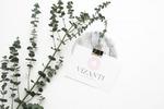 Разработка логотипа для бренда женской одежды VIZANTI