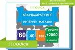 Рост трафика для интернет магазина + 2000 человек за неделю