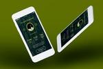 Брендовое Мобильное приложение