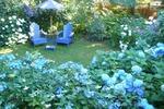 Синий сад моей любви