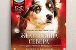 Афиша для выставки собак