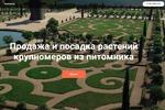 Питомник растений_Настройка Яндекс Директ и Google Ads