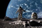 NASA: Исследования качества очистки воздуха комнатными растениям