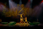 Невероятное шоу цирка CIRQUE DU SOLEIL