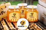 Живой мёд
