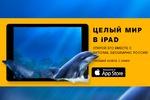 Рекламный Баннер для National Geographic Pоссия