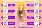 Инфографика (женская тема 2)