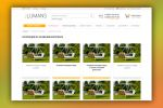 Страница-каталог Lumans