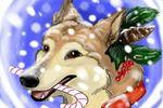 A new year dog christmas card