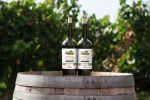 Домашнее Яблочное вино (не для продажи в магазине)