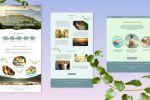 Многостраничный сайт центра оздоровления