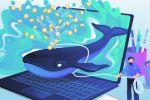 «Поймай кита!»