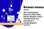 Разработка бизнес-планов, White Paper, заявок для грантов