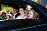 Свадебная ретушь + архив с фотографиями