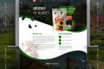 Дизайн сайта семечки от Атамана