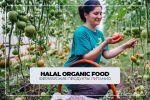 Таргет | фермерские продукты питания