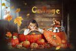 Осенний коллаж с тыквами