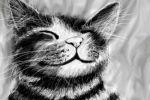 Рисунок кот