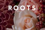 Цветы Roots