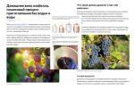 Домашнее вино изабелла, пошаговый процесс приготовления