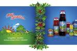 Рекламный проект: бренд, иллюстрация, этикетки, плакат, листовки
