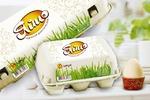 Упаковка для куриных яиц