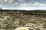 Пустыня в РО