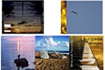 "Дизайн обложки диска ""Янтарное Allegro"""