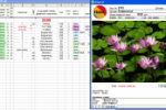 Генератор квитанций для фотоателье в Ms Excel