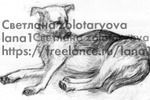 рисунок карандашом собака