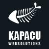 Kapacu Web Solutions