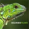 IguanaFilms