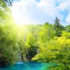 Novoselov Alexander V.