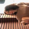 Olga frolkin