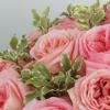 Екатерина Маркетолог