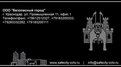 """Дизайн визитной карточки """"ООО """"Безопасный город"""". Вариант №2"""
