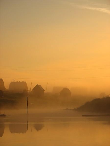 Золотой тюль утра