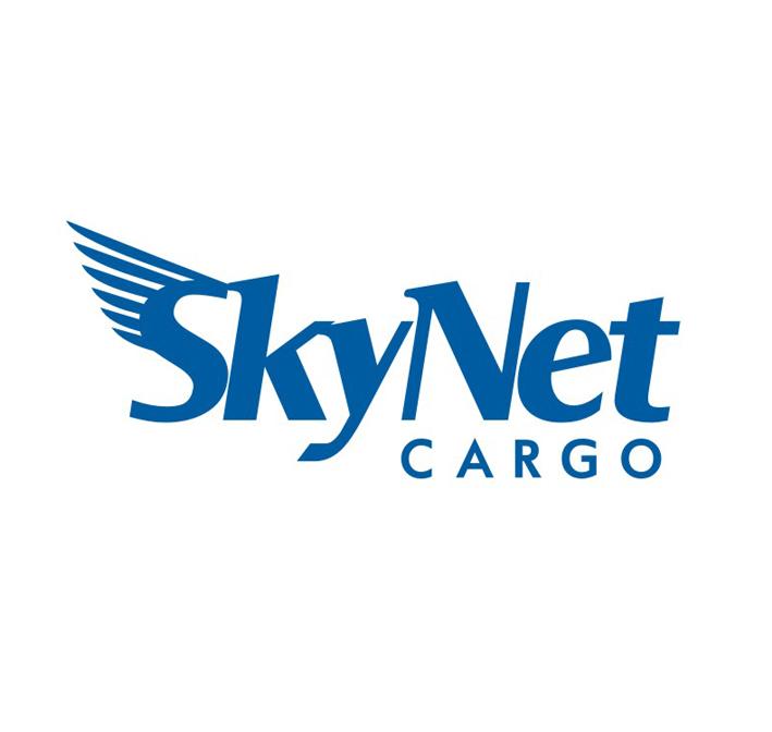 SKYNET - авиа компания